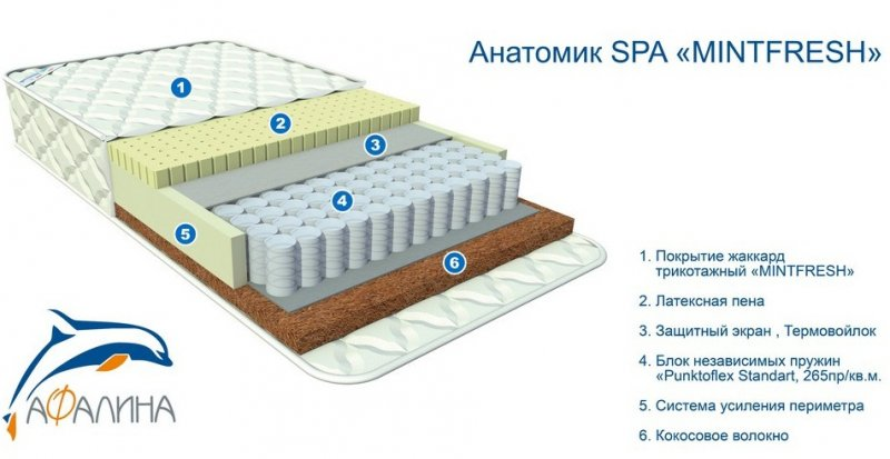Анатомик Spa MintFresh